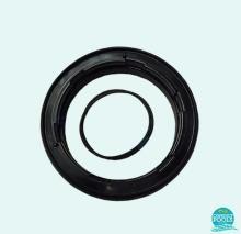 Inel plus garnitura filtru Delta 10